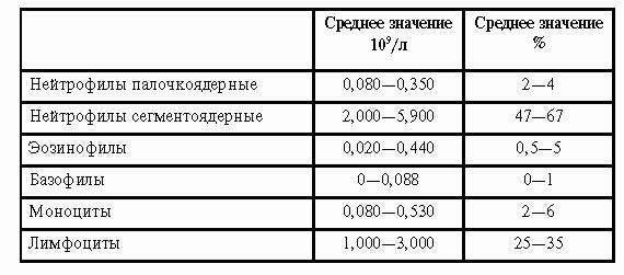 Таблица нормы лейкоцитов