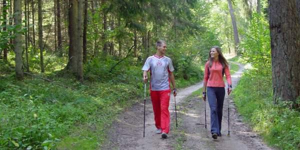 Прогулка с палками по лесной дороге