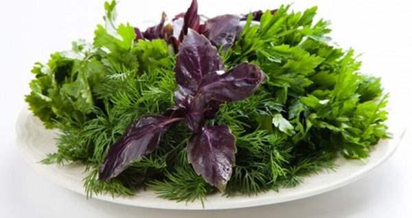 Свежая зелень на тарелке
