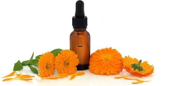 Цветки календулы с флаконом эфирного масла