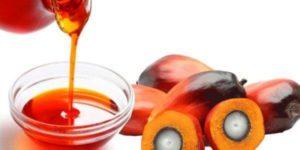 Пальмовое масло, польза и вред для здоровья