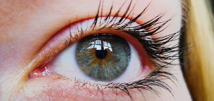 Ткани глаза покрытые слезной пленкой