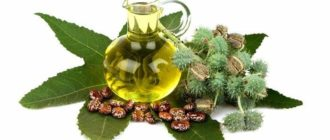 Изображение касторового масла в стеклянном кувшине на фоне листьев, плодов и семян клещевины